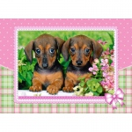 PUZZLE Dachshund Puppies (120 Teile)