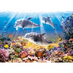 PUZZLE Dolphins Underwater (500 Teile)