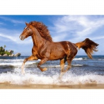 PUZZLE Horse on the Beach (500 Teile)