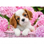 PUZZLE Pup in Pink Flowers (500 Teile)