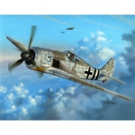 Focke Wulf Fw 190 A-6 Early Sturmbirds - Special Hobby 1/48