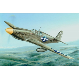 P-51A / F-6A Mustang - Special Hobby 1/72